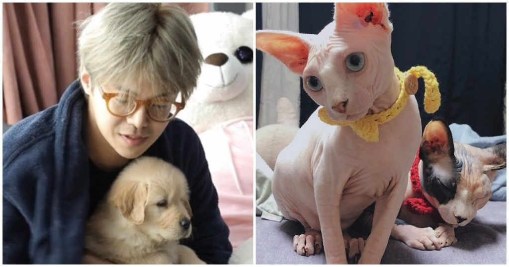 Park Eun Seok Confesses To His Wrongdoing Following Animal Hoarding Controversy