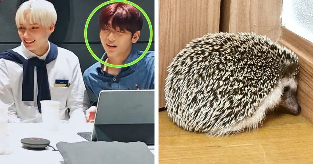 A Fan Asked To Marry Odi, And TXT's Soobin Answered Like A Total Dad